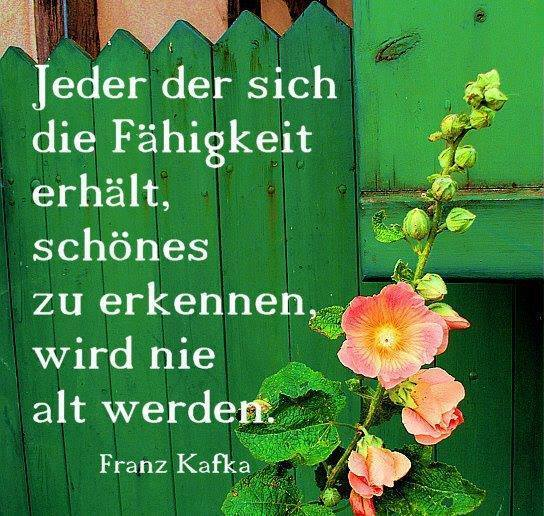 Kunst zu Kafka